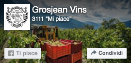 Pagina Facebook Grosjean wines